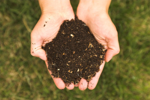 compost-for-your-garden