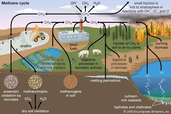 methane-cycel