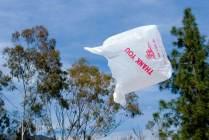 plastic-bag-in-wind